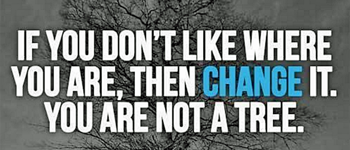 If you don't like where you are then change it, you are not a tree